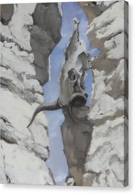 White Place Skull Canvas Print