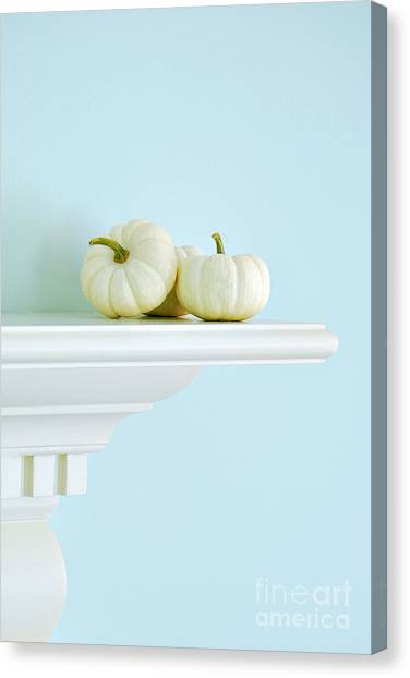Pumpkins Canvas Print - White Pumpkins by HD Connelly