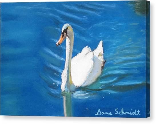 White Swan At Lake Eola Of Orlando Canvas Print