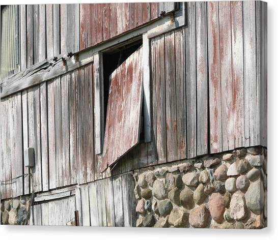 Who Let The Cow Out Canvas Print by Michelle Shull