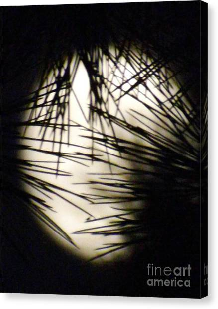 Wicked Moon Canvas Print by Gary Brandes