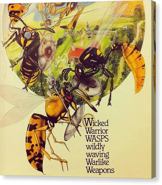 Bases Canvas Print - Wicked Wasps by Megan Lacy