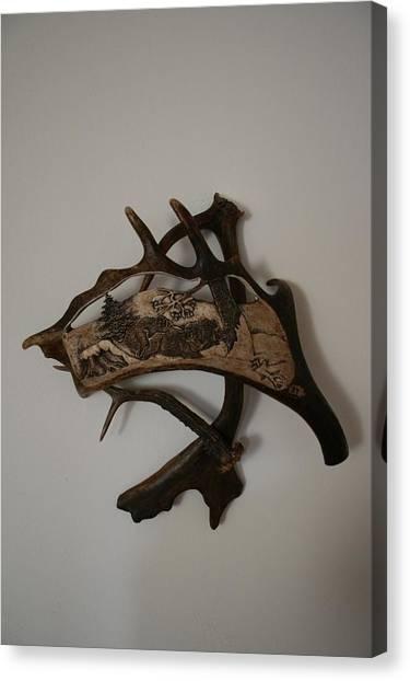 Wild Boars Running Canvas Print by Banucu Ioan