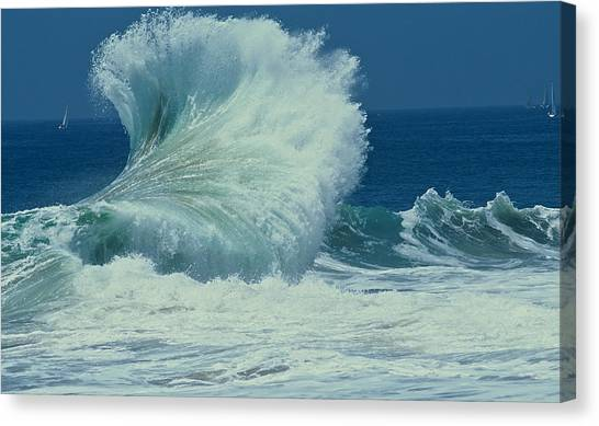 Wild Wave Canvas Print
