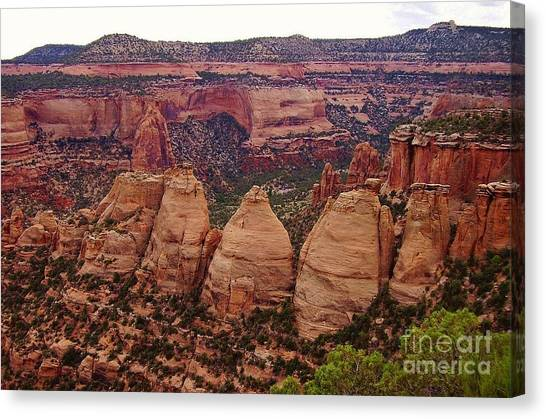 Colorado National Monument  Canvas Print by Patricia Kertson