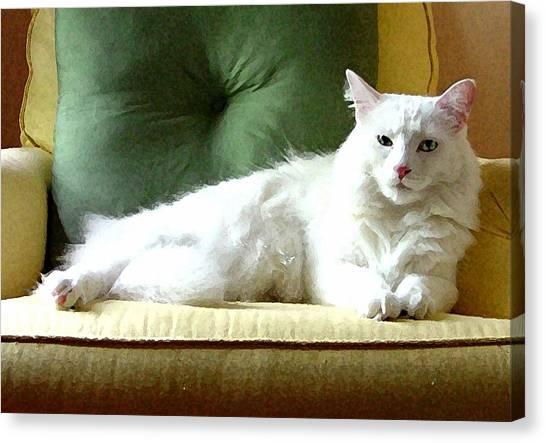 Manx Cat Canvas Print - William by Kathleen Horner