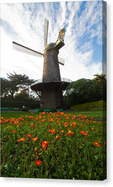 Windmill And Poppies Canvas Print