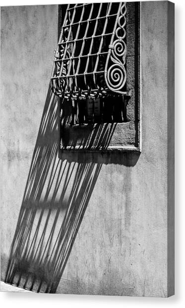 Window I Canvas Print
