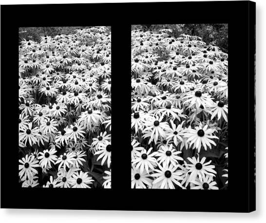 Window To Cheer Canvas Print