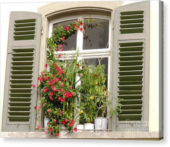 Window With Flower Pots Canvas Print