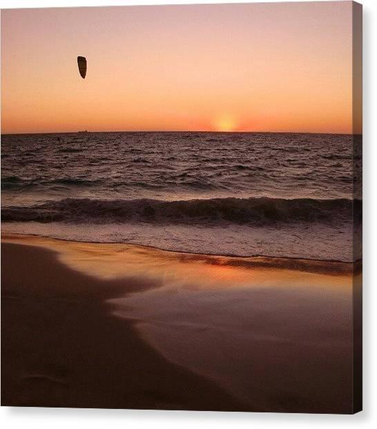 Ocean Animals Canvas Print - Windsurfer by Dave  Cassidy