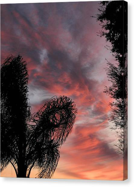 Windswept Clouds Canvas Print