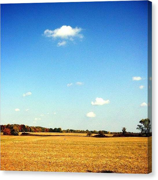 Harvest Canvas Print - Windswept Field #countrylife #harvest by Marc Plouffe