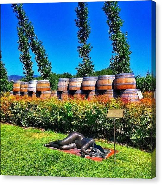 Winery Canvas Print - Wine Tasting Napa Valley by Jp Bernaldo