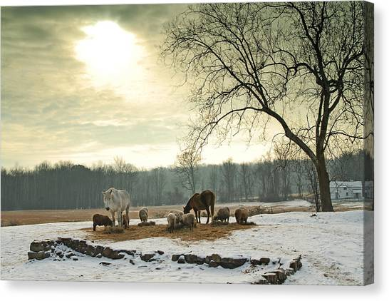Canvas Print featuring the photograph Winter by Craig Leaper