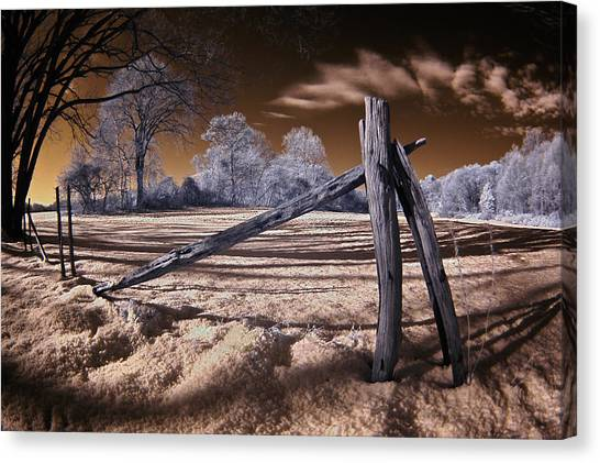 Winter Dream Canvas Print