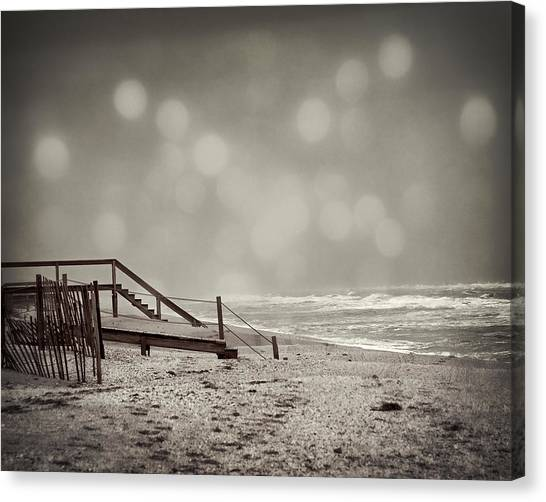 Winter In Florida Canvas Print