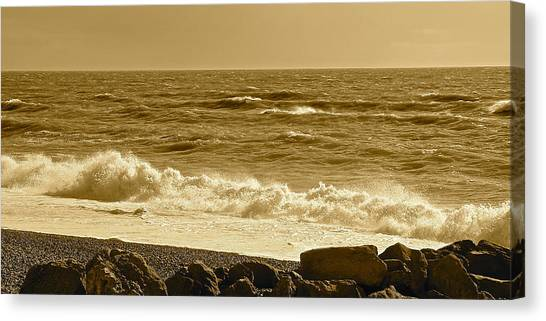 Winter In Sepia Canvas Print by Karen Grist