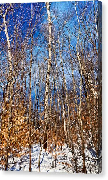 Winter Landscape I Canvas Print