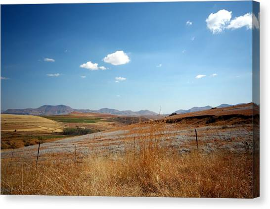 Winter Landscape In South Africa Canvas Print