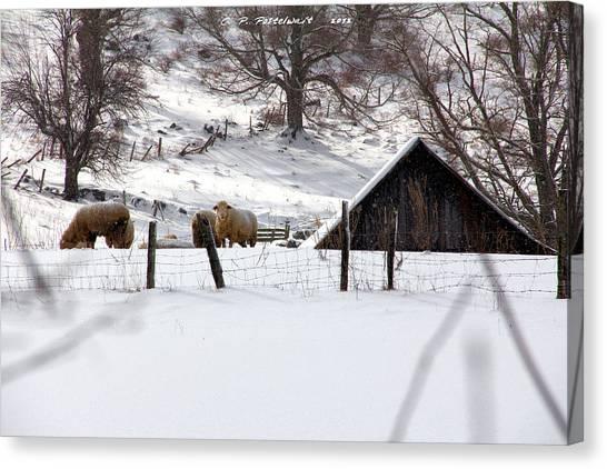 Winter On The Farm Canvas Print by Carolyn Postelwait