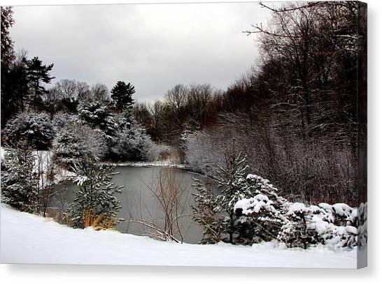 Winter Pond Canvas Print