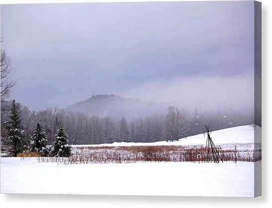 Winter Strata Canvas Print