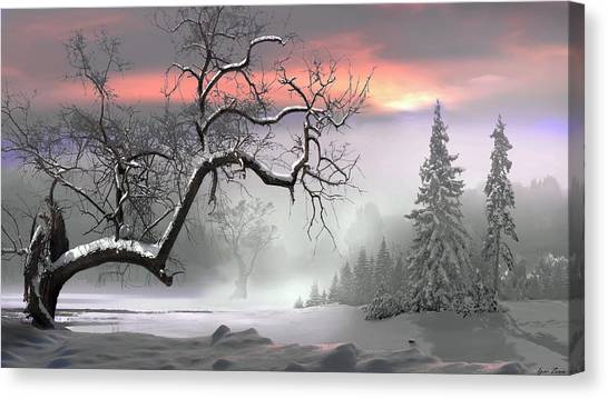 Winter Trees Canvas Print by Igor Zenin