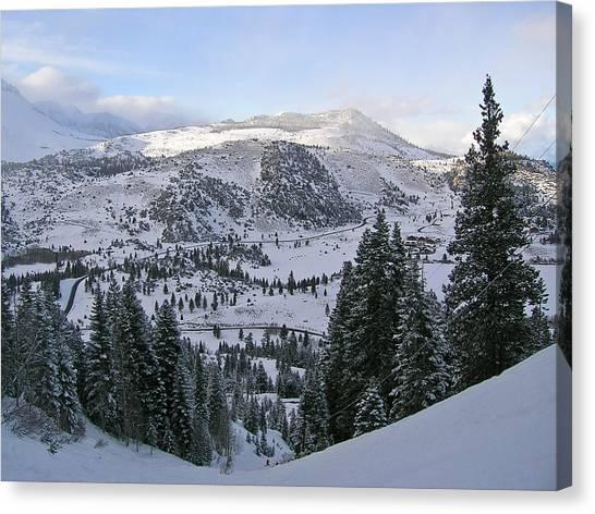 Winter Wonderland Fine Art Print Canvas Print by Ian Stevenson