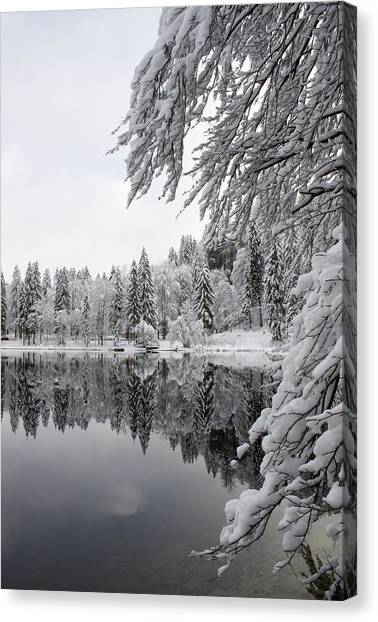 Wintery Reflections Canvas Print