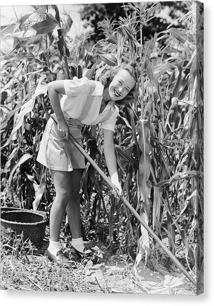 Woman Hoeing In Field Of Corn Canvas Print by George Marks