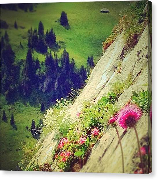 Swiss Canvas Print - Wonderful #view In The #swiss #alps by Christoph Flueckiger