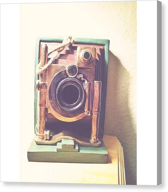 Turtles Canvas Print - Wooden Camera by Turtle Torres