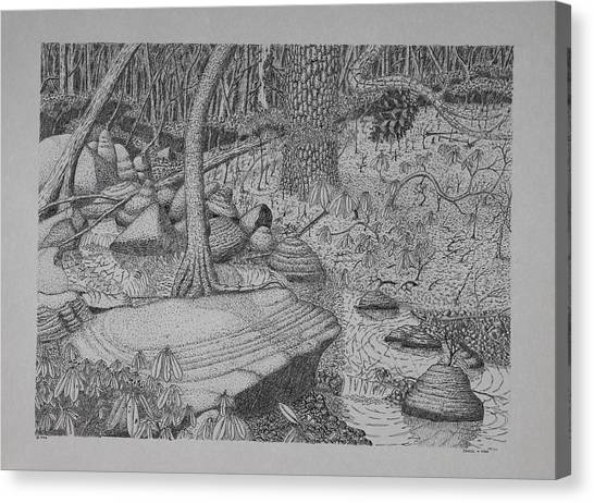 Woodland Stream Canvas Print