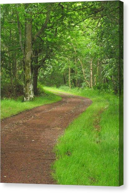 Woodland Track Canvas Print