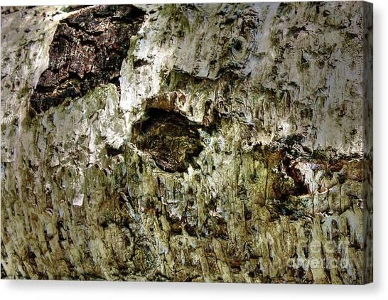 Woodoh 4 Canvas Print