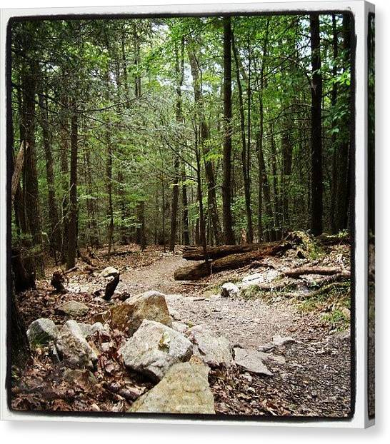 Appalachian Mountains Canvas Print - #woods #forest #trail #mountains by Ryan Dieter