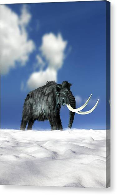 Woolly Mammoth, Artwork Canvas Print by Victor Habbick Visions