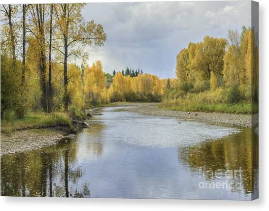 Yampa River Colorado II Canvas Print
