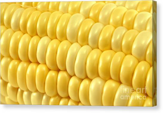 Vegetables Canvas Print - Yellow Corn Macro by Blink Images