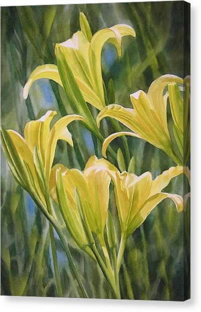 Spring Bulbs Canvas Print - Yellow Lilies by Sharon Freeman