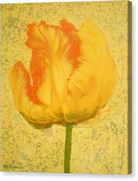 Yellow Parrot Tulip Canvas Print