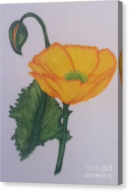 Yellow Poppy Canvas Print by Berta Barocio-Sullivan