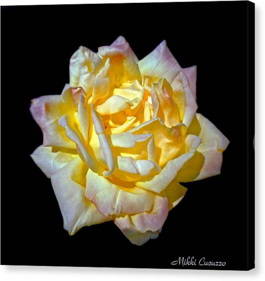 Yellow Rose On Black Canvas Print
