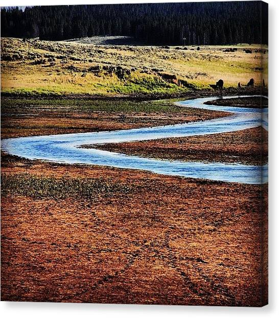 Wyoming Canvas Print - Yellowstone August 2012 #yellowstone by Cassidy Taylor