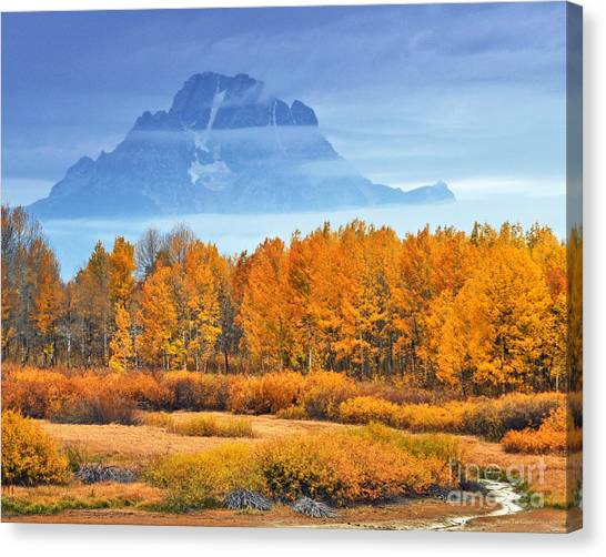 Yelow And Orange Autumn Grand Teton National Park Canvas Print