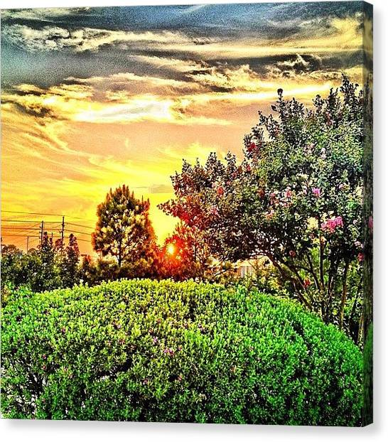 University Of Illinois Canvas Print - Yesterday's Sunset by Arturo Jimenez