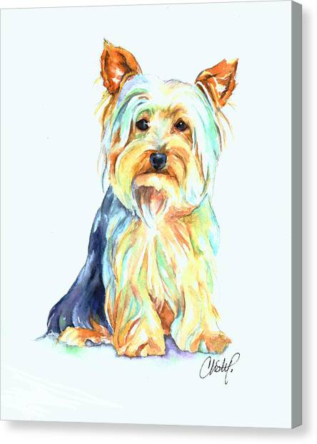 Yorkshire Terriers Canvas Print - Yorkie Dog Portrait by Christy  Freeman