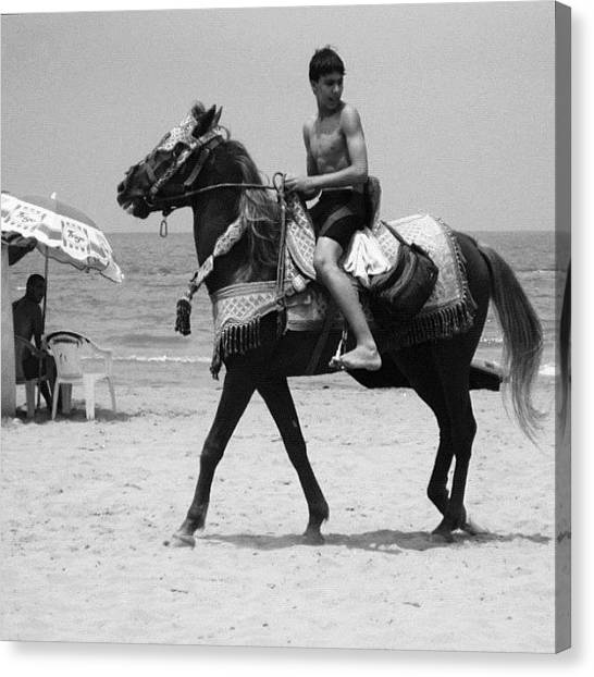 Knights Canvas Print - Young Knight On The Beach In Saidia by Gianluca Sommella