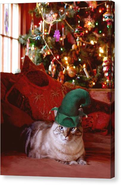 Manx Cats Canvas Print - Yule Cat by Kathleen Horner